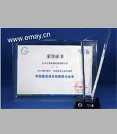 中國最具成長性新銳企業獎(APEC中小企業峰會組委會)